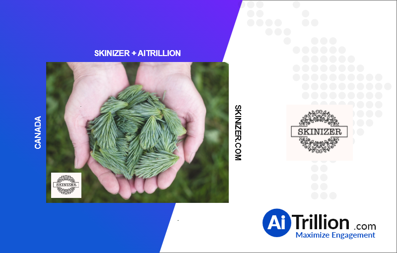 Skinizer onboard with AiTrillion