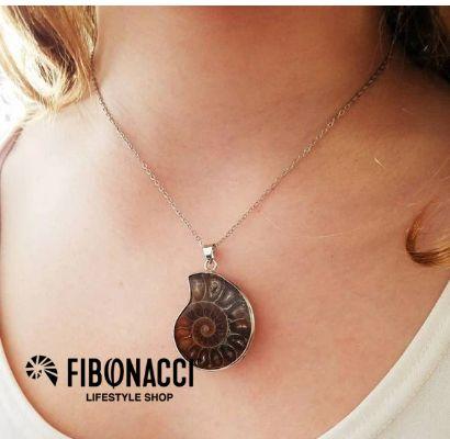 Fibonacci Lifestyle